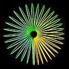 Zusammenfassung Hologramm von MMPhotographyUK