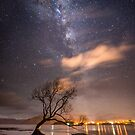 Milky Way over the Wanaka Tree by Alex Stojan