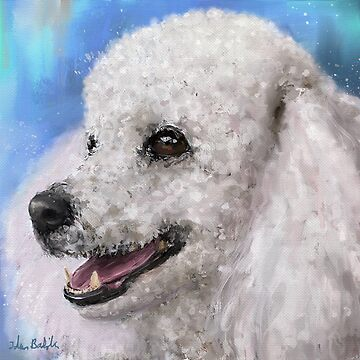 Painting of a White Fluffy Poodle Smiling by ibadishi