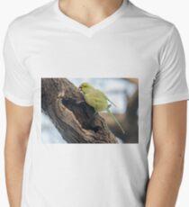 Rose-ringed Parakeet 03 Men's V-Neck T-Shirt