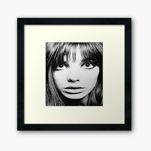 BIRKIN! Framed Art Print