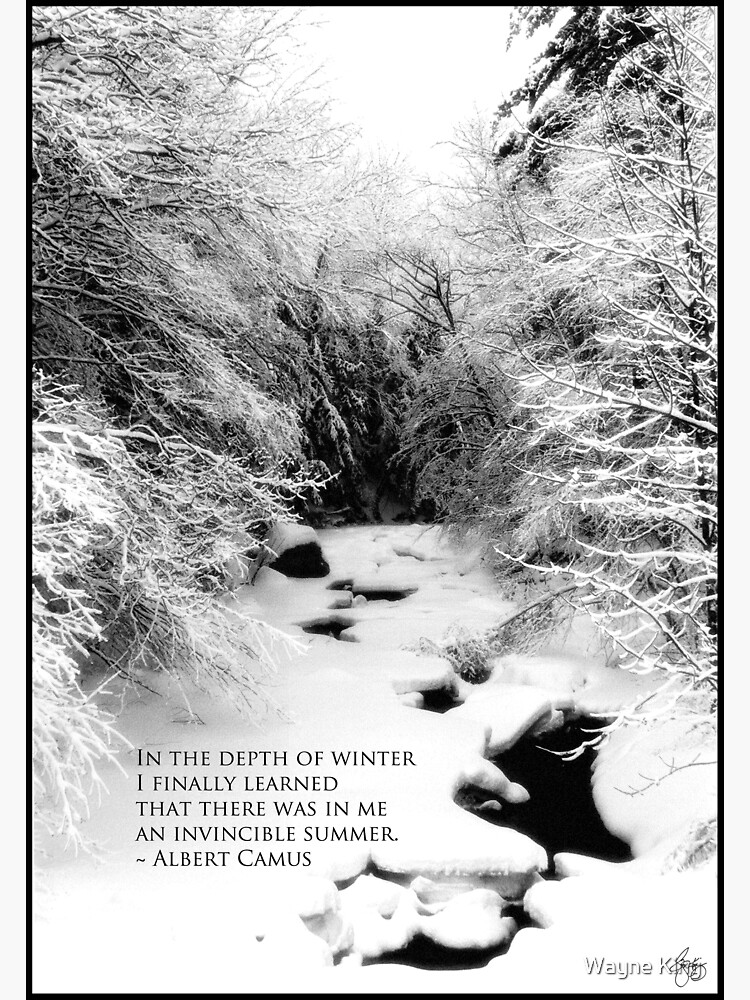 Stinson Brook - Camus Quote Print and Poster by waynedking