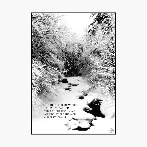 Stinson Brook - Camus Quote Print and Poster Photographic Print