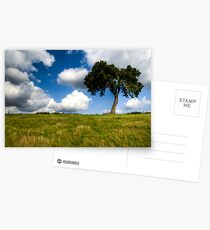 Lonely Tree Postcards