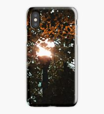 Finding the Street Lamp Among the Leaves iPhone Case