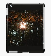 Finding the Street Lamp Among the Leaves iPad Case/Skin