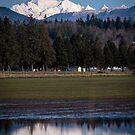 Mount Baker, Whatcom County, Washington by Harv Churchill