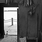Fishing Cottage , China by Phill Jenkins