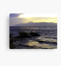 Wintry-Ness Canvas Print
