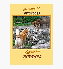 Since We are Neighbors Photographic Print