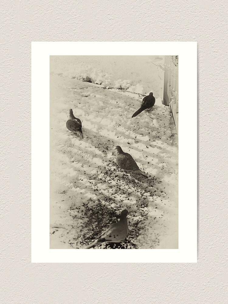 Alternate view of Hunting For Food Art Print