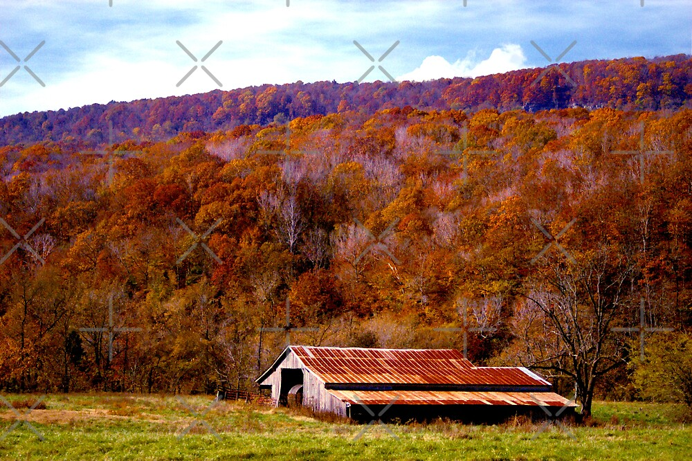 Rusty Barn in Autumn by Lisa G. Putman