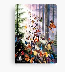 Butterfly Woods Canvas Print