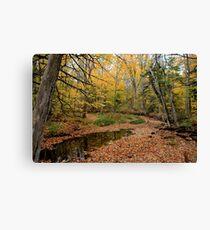 Autumn Leaf Blanket - Nova Scotia Canada Canvas Print