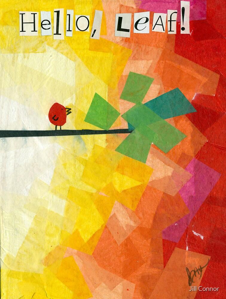 Hello Leaf by Jill Connor