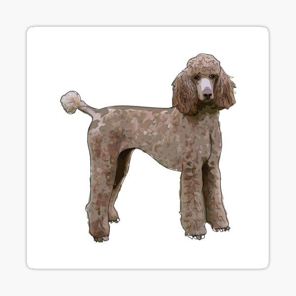 Standard Poodle Dog Sticker