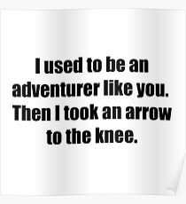 I Used to Be an Adventurer Like You. Then I Took an Arrow to the Knee. Poster