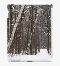 Forest Snowstorm 021018 iPad Case/Skin