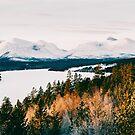 Majestic Peaks of Rondane National Park in Warm Winter Light Shot on Film by visualspectrum