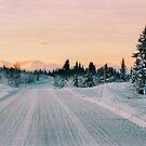 Scandinavian Winter Landscape in Warm Evening Sunlight Shot on Film by visualspectrum