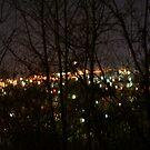 City Lights of West Virginia  by Fern Design