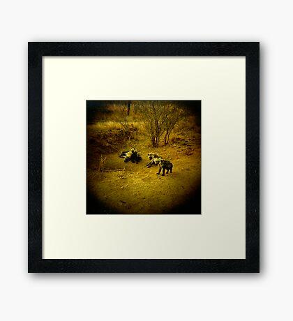 Baby Hyenas Framed Print