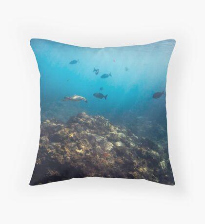 Flinders Reef Throw Pillow