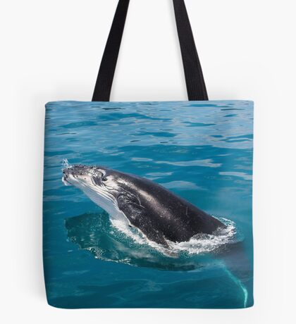 Humpback whale calf, Moreton Bay Tote Bag