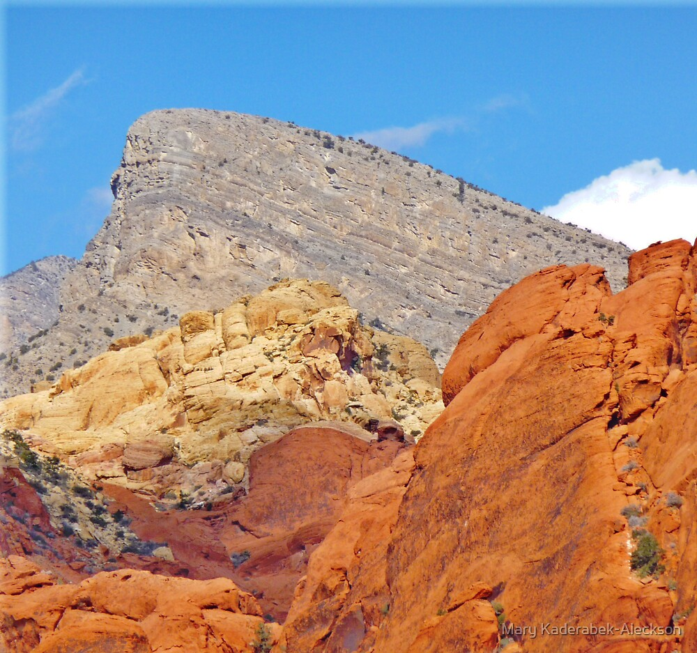 Red Rock Canyon by Mary Kaderabek-Aleckson