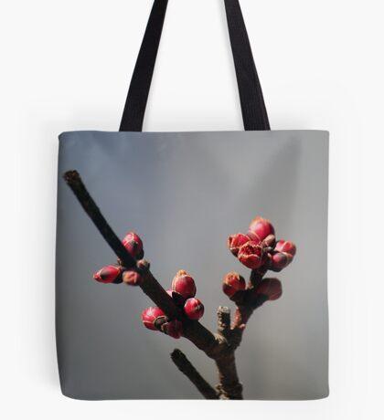 Signs of Spring - 2 Tote Bag
