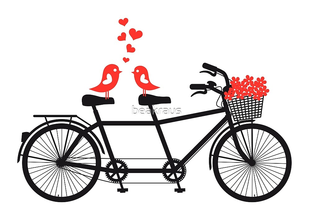 tandem bicycle with cute love birds by beakraus