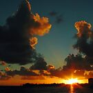Breaking Dawn by David  Willison