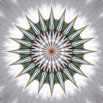 Winter Kaleidoscope Fractal by gretassister