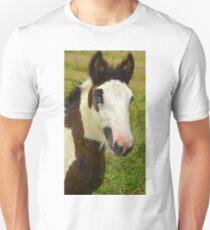 Gypsy Cob Colt Unisex T-Shirt