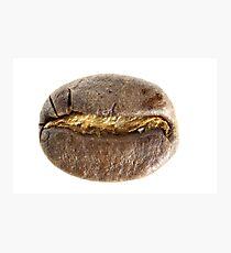Coffee Bean Photographic Print