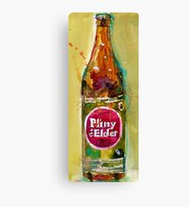 Pliny the Elder Canvas Print