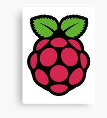 raspberry pi  Canvas Print