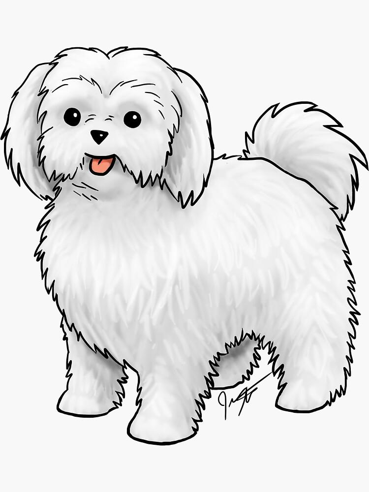 Maltese - Puppy Cut by jameson9101322