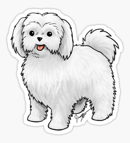 Maltese - Puppy Cut Sticker