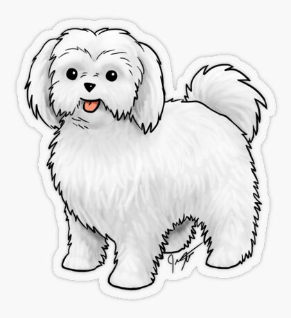 Maltese - Puppy Cut Transparent Sticker