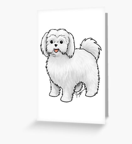 Maltese - Puppy Cut Greeting Card