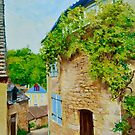 Beynac Vine, Nouvelle Aquitaine, France by Dai Wynn