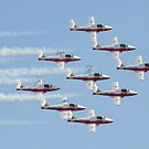 The Canadian Force's Snowbirds by Rick Nicholas