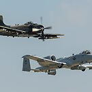 A-1 Skyraider and A-10 Thunderbolt II perform the USAF Heritage Flight by Rick Nicholas