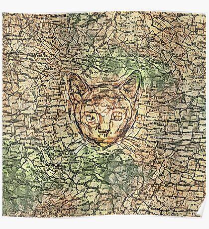 SPY cat HIDIN IN teh map Poster