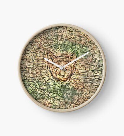SPY cat HIDIN IN teh map Clock