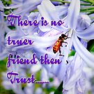 Trust by Lynette Higgs