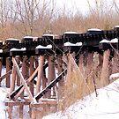 Wooden Train Bridge .. by Larry Llewellyn