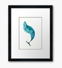 Beluga  Framed Print