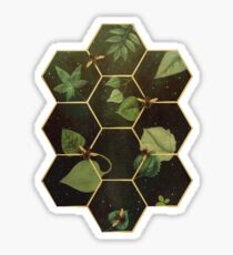Bees in Space Sticker